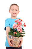 Menino com flor potted imagens de stock royalty free