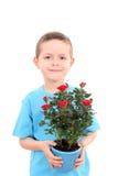 Menino com flor potted imagens de stock