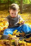 Menino com folhas de outono Fotos de Stock