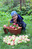 Menino com maçãs Fotografia de Stock Royalty Free