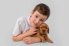 Menino com o cachorrinho vermelho isolado no fundo branco Amizade do animal de estimação da criança Fotos de Stock Royalty Free
