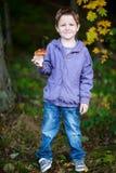 Menino com o cogumelo selvagem na floresta imagem de stock