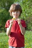 Menino com o dente-de-leão nas mãos de Fotografia de Stock