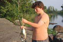 Menino com peixes Imagem de Stock Royalty Free