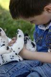 Menino com seu filhote de cachorro Fotos de Stock