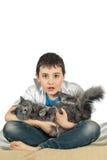 Menino com um gato em um background8 branco Foto de Stock