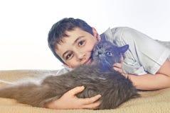 Menino com um gato em um background14 branco Imagens de Stock