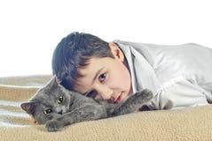 Menino com um gato em um background15 branco Foto de Stock Royalty Free