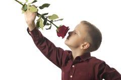 Menino com uma rosa vermelha Fotografia de Stock