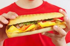 Menino cortado pequeno com um cheeseburger saboroso no fim branco do fundo acima imagens de stock
