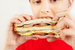 Menino cortado pequeno que come um sanduíche saboroso no fim branco do fundo acima imagens de stock royalty free