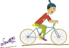 Menino da bicicleta Fotos de Stock