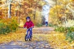 Menino da criança com a bicicleta na floresta do outono Fotografia de Stock