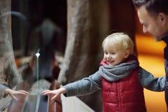 Menino da criança com seus animais de observação do pai através do vidro no jardim zoológico foto de stock royalty free