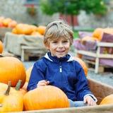 Menino da criança na exploração agrícola da abóbora que comemora a ação de graças Fotografia de Stock Royalty Free