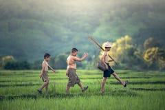 Menino da pesca no campo do arroz foto de stock