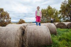 Menino das meninas que joga pacotes da exploração agrícola Imagem de Stock