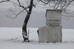 Menino de Amish que espreita da cerca da dependência Imagem de Stock