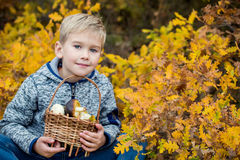 Menino de Autumn Portrait Toddler nas folhas fotografia de stock royalty free