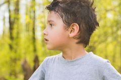 Menino de cabelo escuro em uma floresta Fotos de Stock