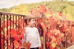 Menino de sorriso bonito no parque do outono Fotos de Stock