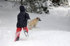 Menino de Tennage que joga com cão Foto de Stock