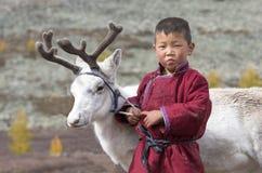 Menino de Tsaatan, vestido em um deel tradicional com uma rena na Fotografia de Stock