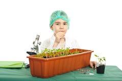 Menino do estudante que estuda plantas Imagem de Stock