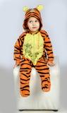 Menino do tigre Imagem de Stock Royalty Free