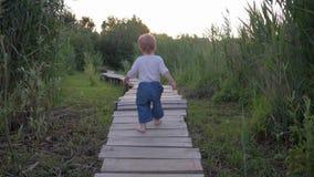 Menino doce da criança independentemente e passeio seguro na ponte de madeira com os pés descalços na natureza entre a grama alta video estoque