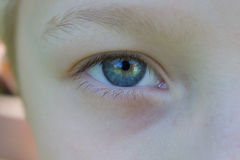 Menino dos olhos azuis Imagens de Stock