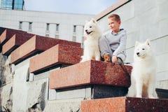 Menino e cão nas etapas no parque Foto de Stock