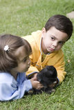 Menino e menina Foto de Stock Royalty Free