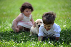Menino e menina com seu cão no parque Fotos de Stock Royalty Free