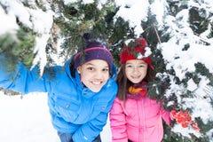 Menino e menina que escondem sob o pinheiro Imagens de Stock Royalty Free