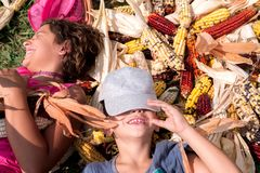 Menino e menina que têm o divertimento cercado por espigas de milho coloridas fotografia de stock royalty free