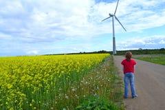 Menino e moinho de vento Fotos de Stock Royalty Free