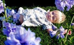 Menino em um jardim Fotos de Stock Royalty Free