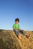 Menino em um monte de feno no campo Foto de Stock Royalty Free