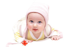 Menino europeu recém-nascido do bebê com a flor vermelha 3 meses velha Imagens de Stock Royalty Free