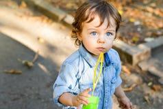 Menino eyed azul no parque com folhas caídas fotos de stock
