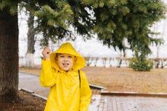 Menino feliz em um casaco amarelo com uma capa que puxa um ramo de uma GR foto de stock