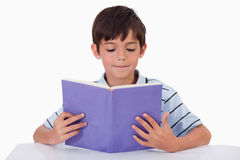 Menino focalizado que lê um livro Foto de Stock Royalty Free