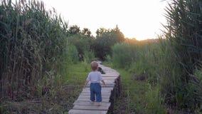 Menino infantil bonito corajosamente e passeio seguro na ponte de madeira com os pés descalços na natureza entre juncos no por do filme
