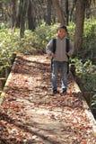 Menino japonês em uma caminhada Imagens de Stock