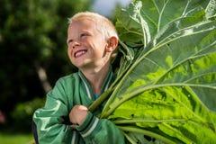Menino jouful pequeno com ruibarbo Fotos de Stock Royalty Free