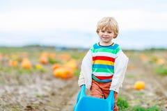 Menino louro bonito da criança com as abóboras grandes no remendo Fotografia de Stock Royalty Free