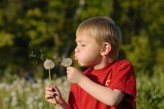 Retrato de um menino louro Fotos de Stock