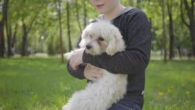 Menino louro considerável do retrato que joga com seu cão macio no parque, estando na grama em seus joelhos O levantamento da cri vídeos de arquivo