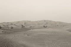 Menino no deserto Imagens de Stock